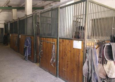 box-chevaux