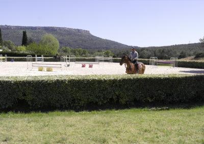 haras-aix-en-provence-ecurie-3