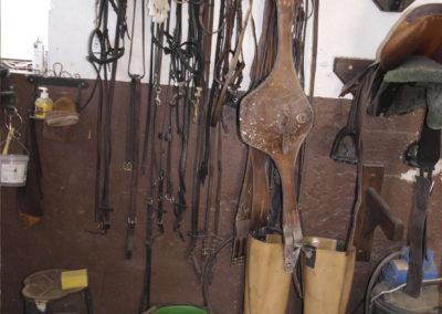 pension-chevaux-aix
