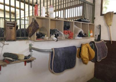 pension-chevaux-aix-5