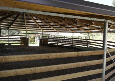 pension-chevaux-aix-provence-15