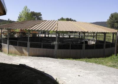 pension-chevaux-aix-provence-6