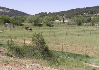 pre-chevaux-aix-en-provence